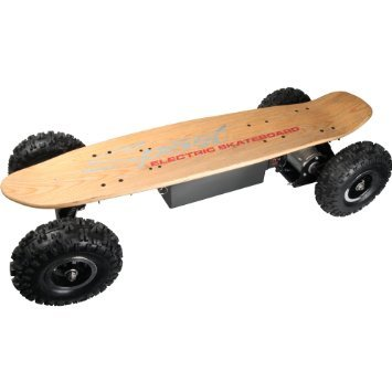 E-road skateboard 800W